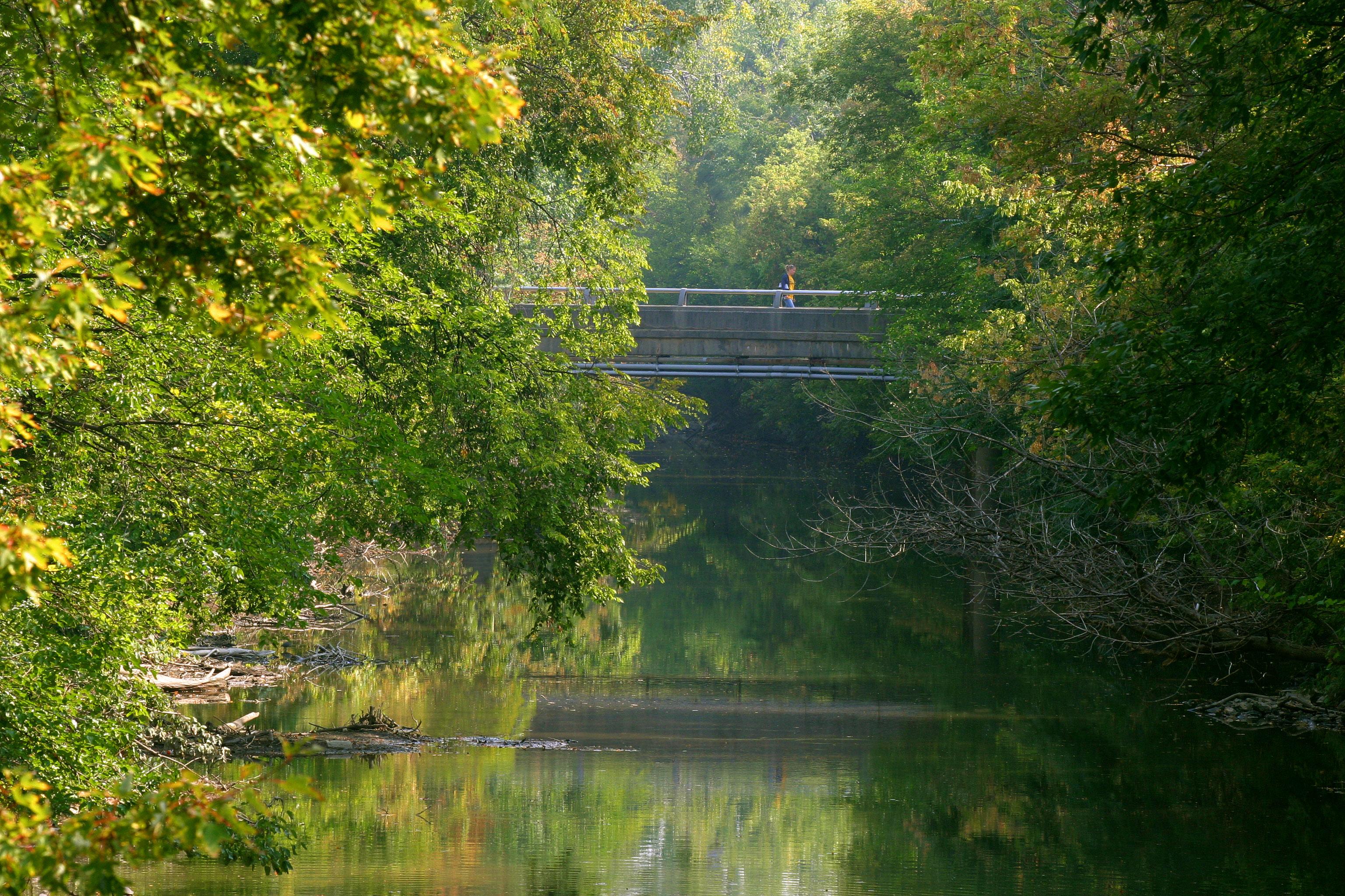 Ottawa river  DVD 434 CD 278